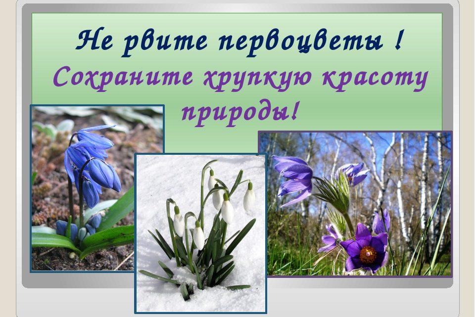 Уважаемые жители и гости Геймановского сельского поселения Тбилисского района!