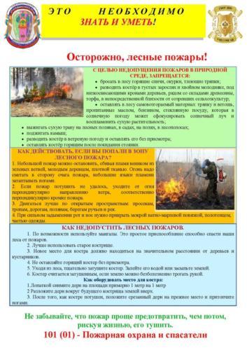 Lesnoj_pozhar